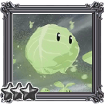 Cabbage Harvest Quest